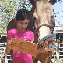 Reading with Horses Book Club